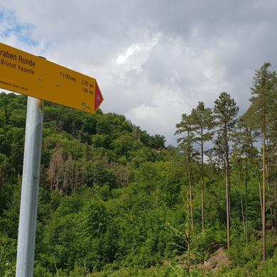 Endspurt Wanderarena Gars – NÖN berichtet