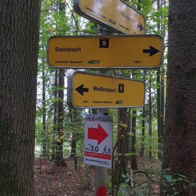Bewegungsarena Steinbach am Attersee