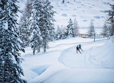 Langlaufzentrum Pillerseetal – Hochfilzen
